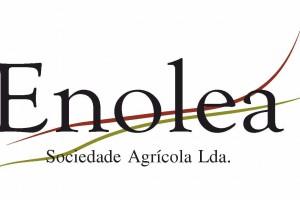 Logotipo Enolea