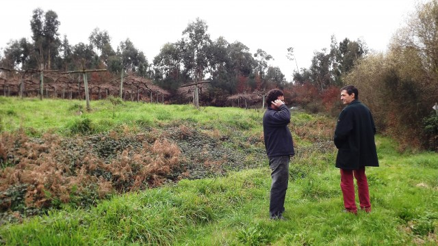 avaliação de terrenos